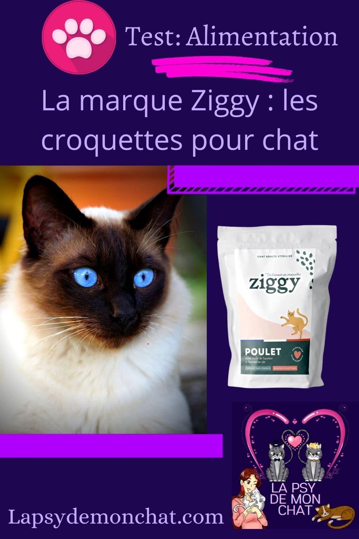 La marque Ziggy les croquettes pour chat - pinterest