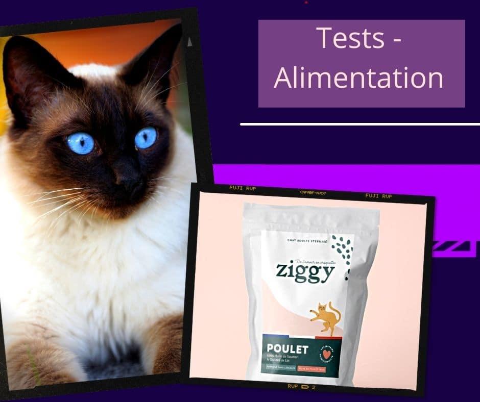 La marque Ziggy les croquettes pour chat