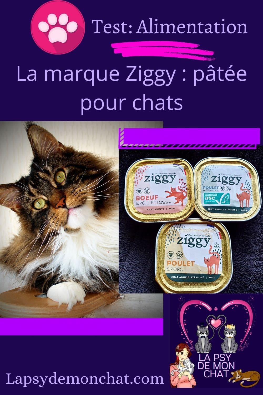 La marque Ziggy pâtée pour chats - pinterest