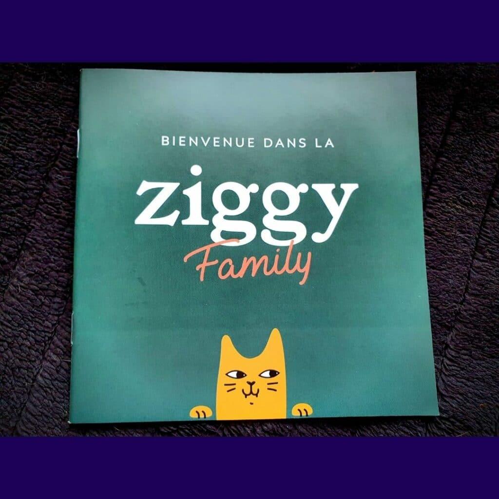 la marque Ziggy