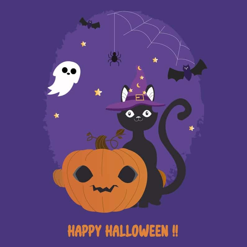 Carte Halloween - chat sorcier