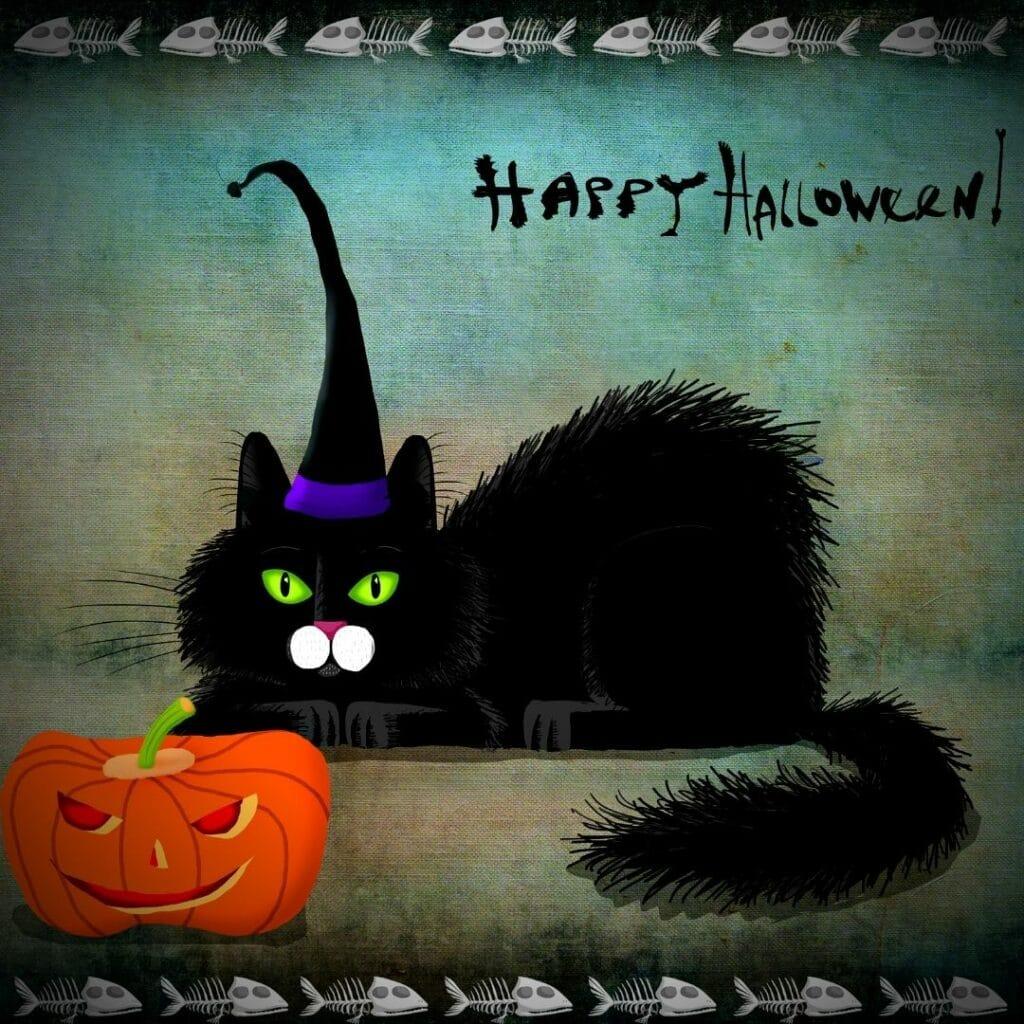carte chat d'Halloween